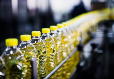 Industrial seed oils—like these bottles of sunflower oil—are inflammatory, nutrient-poor additions to your diet.